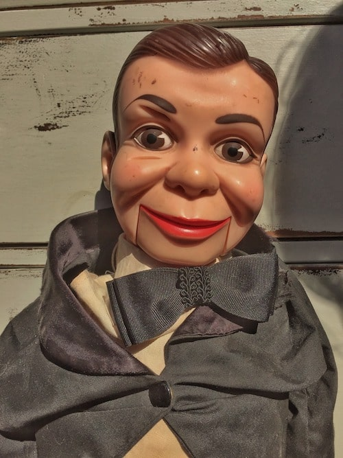 Puppet Show - Ventriloquists - Dummy - Adelaide